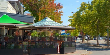 Manuka Shopping Centre which includes autumn leaves