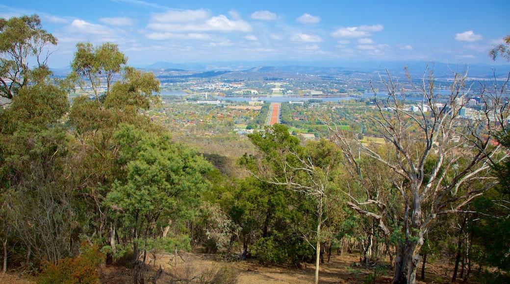 Canberra showing landscape views