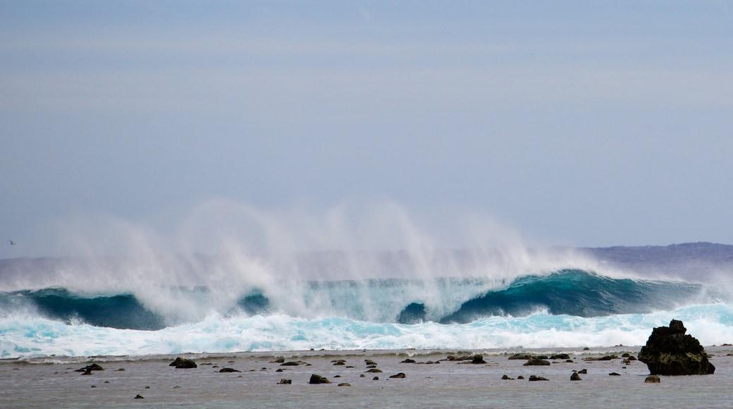 Aro\'a Beach featuring waves