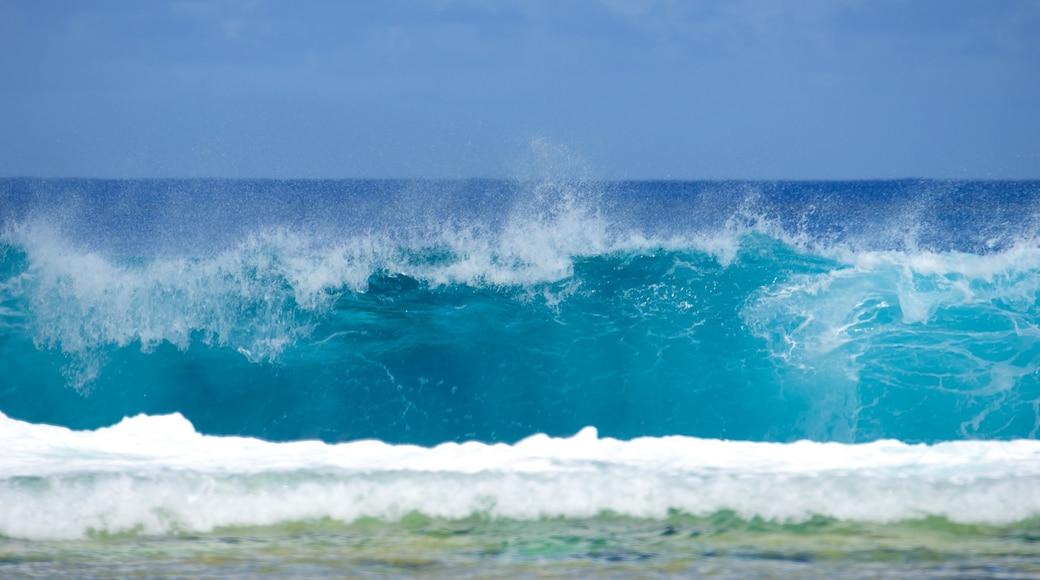 Atiu ofreciendo surf