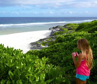 Matai Beach