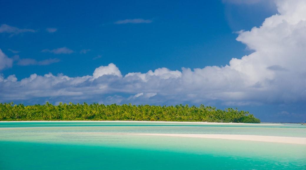 Tekopua featuring tropical scenes