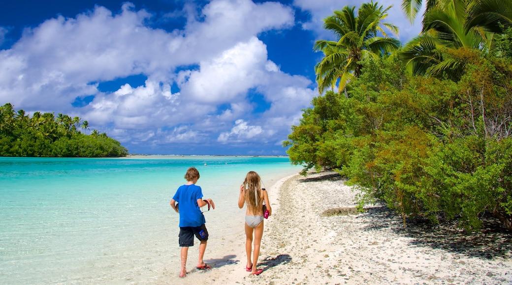 One Foot Island Beach showing a sandy beach as well as children