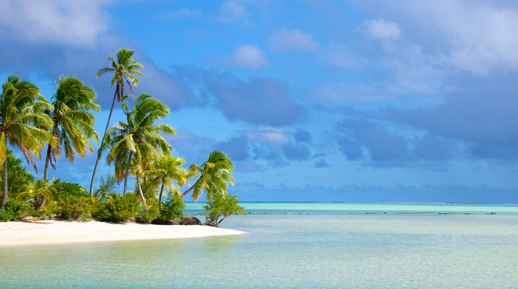 One Foot Island Beach which includes a sandy beach and tropical scenes