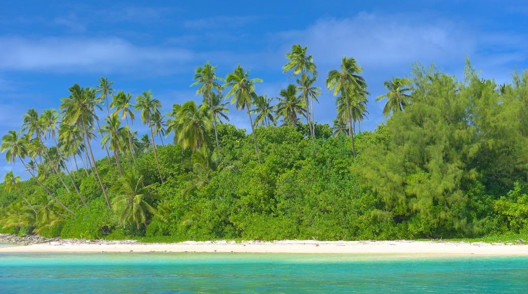 Muri Beach featuring a sandy beach