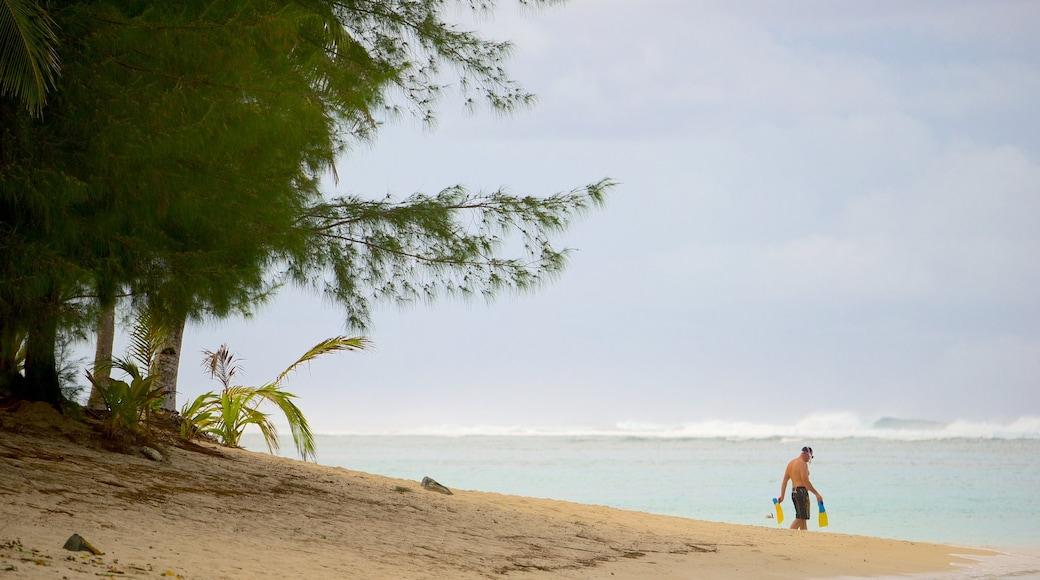 Aro\'a Beach showing a sandy beach
