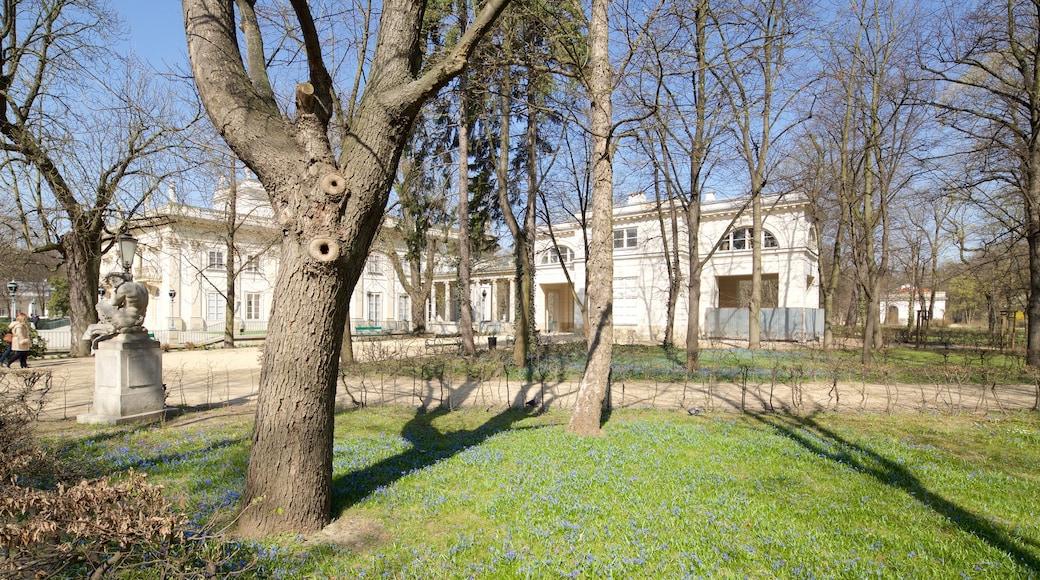 Lazienki Park showing a garden