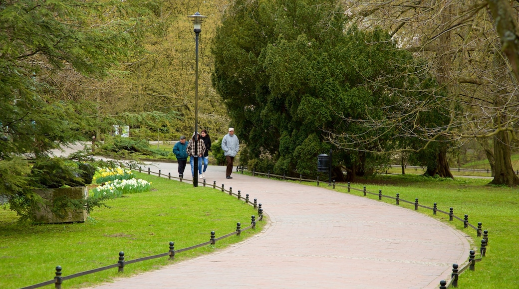 Park Oliwski mit einem Park