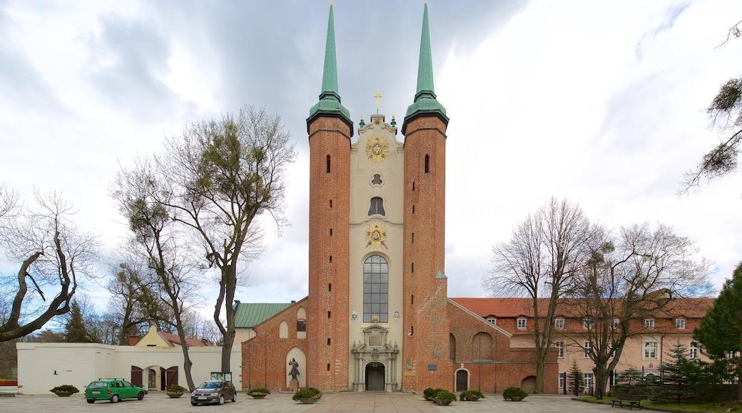Kathedrale von Oliwa das einen Kirche oder Kathedrale und Geschichtliches