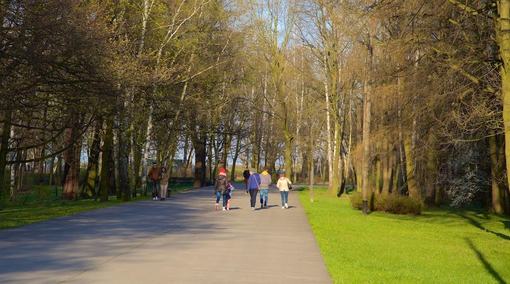 Plage de Jelitkowo mettant en vedette parc