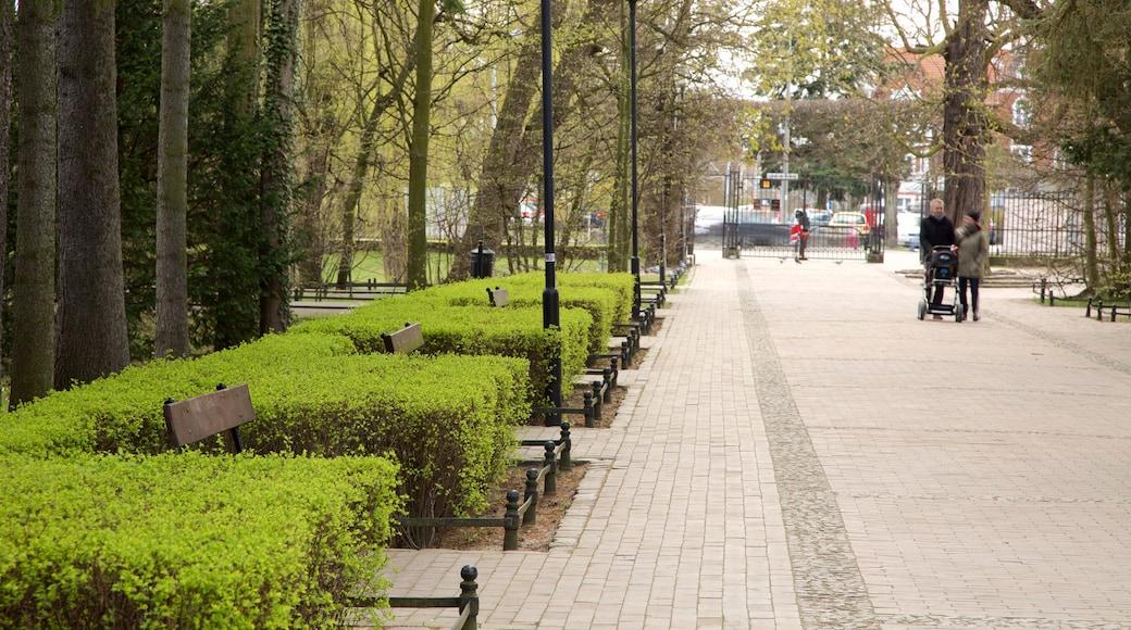 Park Oliwski mit einem Garten