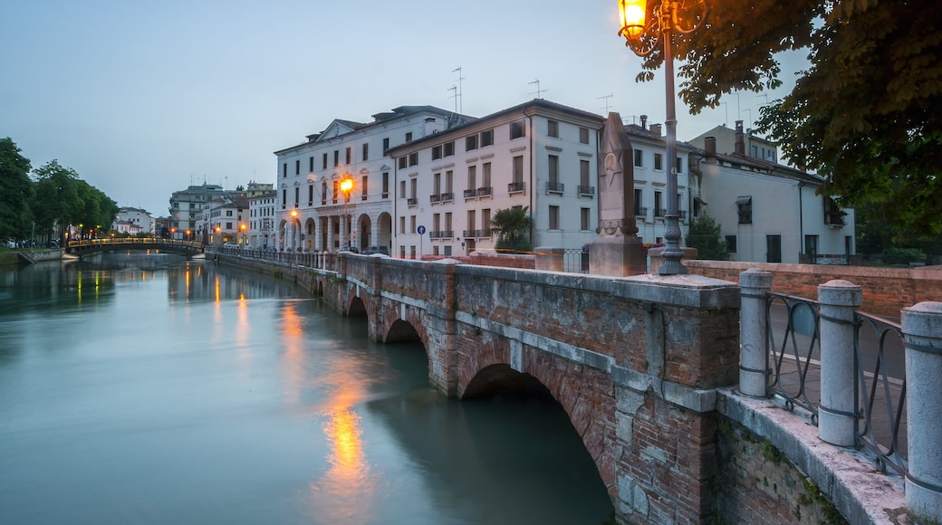 Treviso showing a city and a river or creek