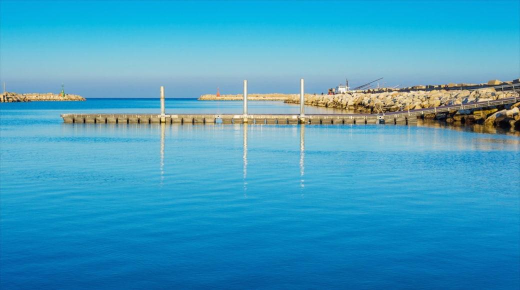 Alba Adriatica which includes general coastal views