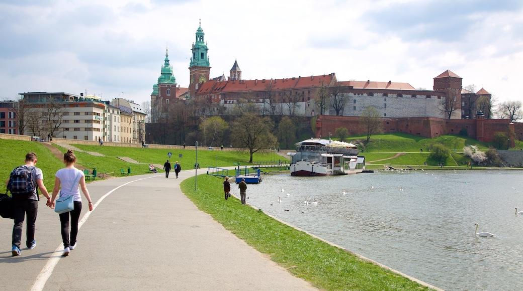 Krakova joka esittää järvi tai vesikuoppa ja puisto sekä pari
