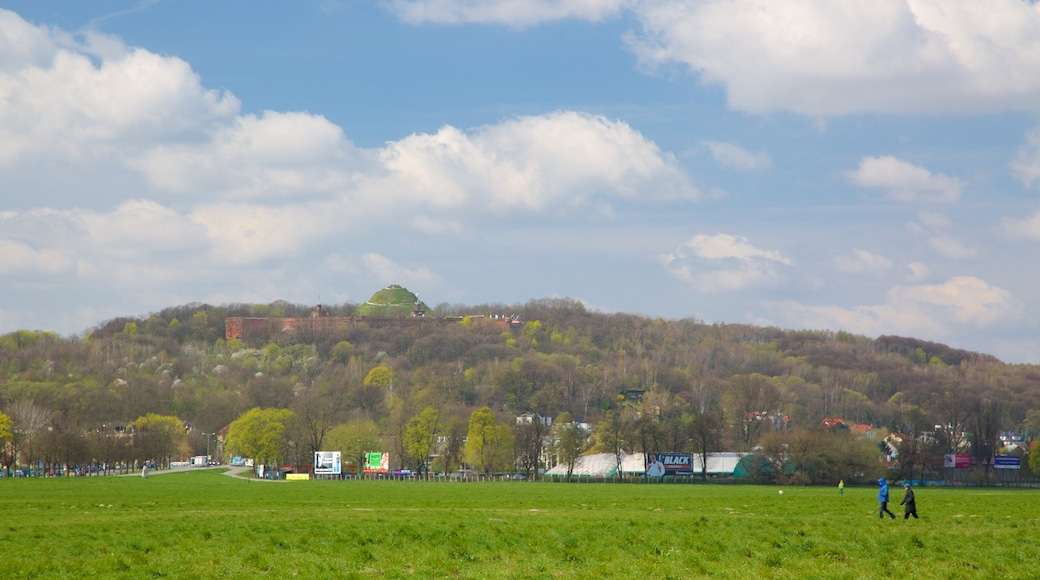 Kopiec Kościuszki som visar en park