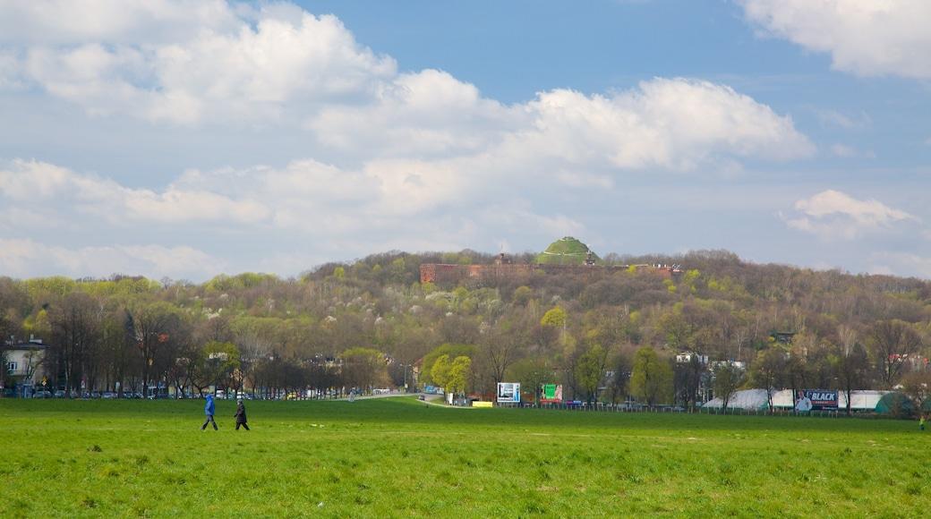 Kopiec Kościuszki som inkluderar en park