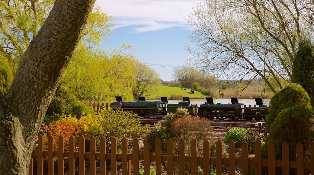 Eastbourne Miniature Steam Railway Adventure Park showing a garden and railway items
