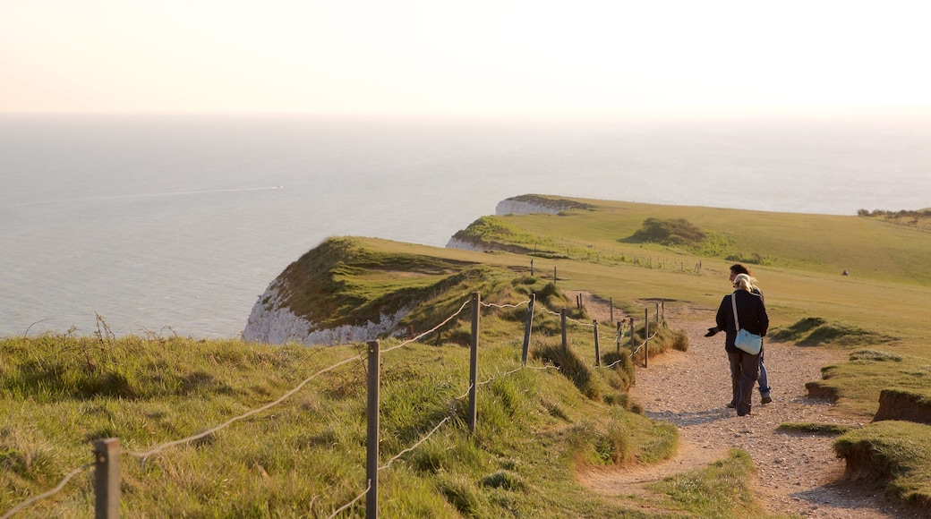 Beachy Head featuring general coastal views as well as a small group of people