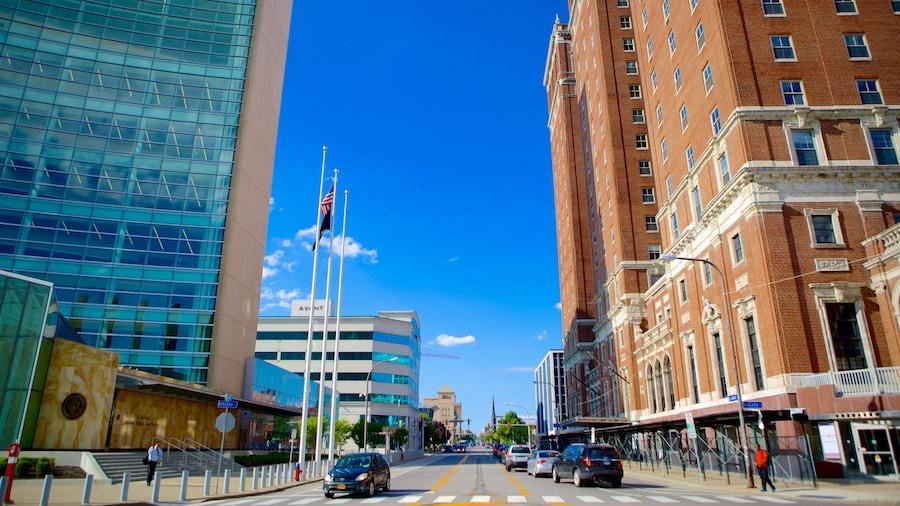 Buffalo mostrando uma cidade e distrito comercial central
