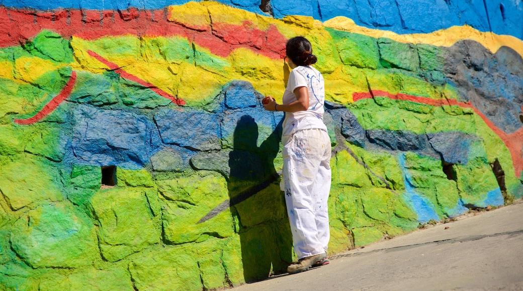 Museu a céu aberto de Valparaíso caracterizando arte ao ar livre assim como uma mulher sozinha