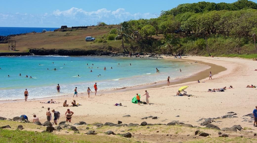 Anakena Beach which includes a sandy beach
