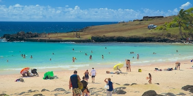 Anakena Beach featuring a beach as well as a small group of people
