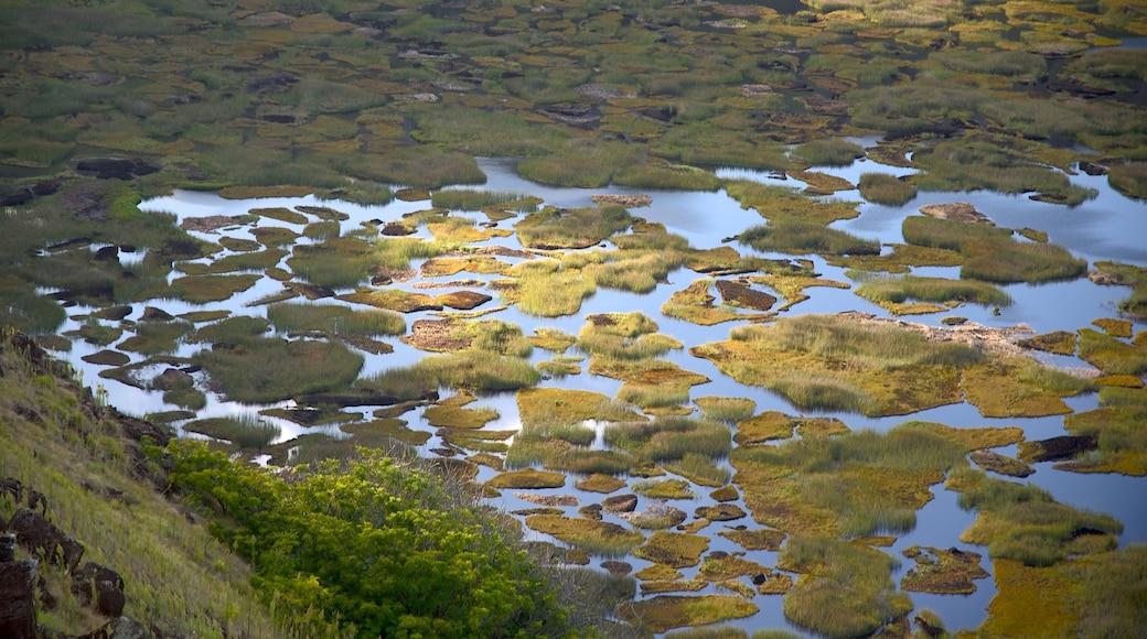 Ranu Kau which includes wetlands