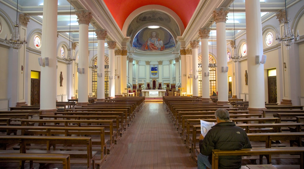 Punta Arenas showing a church or cathedral and interior views as well as an individual male