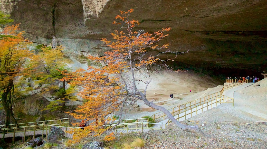 Cueva del Milodon showing a park and caves