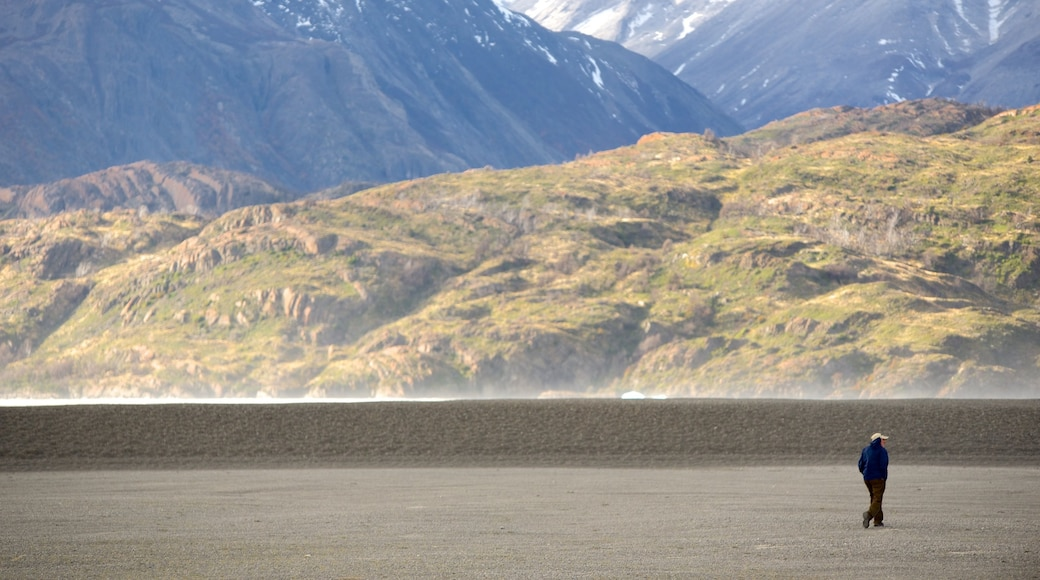Torres Del Paine which includes desert views and tranquil scenes as well as an individual male
