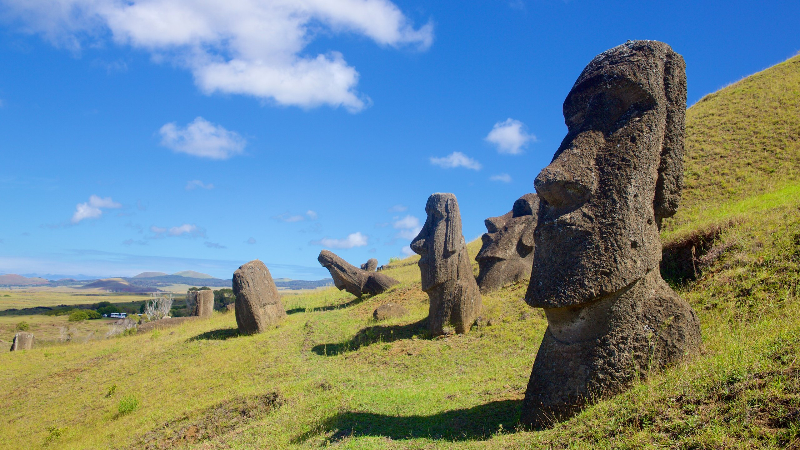 See a carved stone figure that is almost twice the height of any other statue on Easter Island and hundreds more sculptures at this volcanic crater.