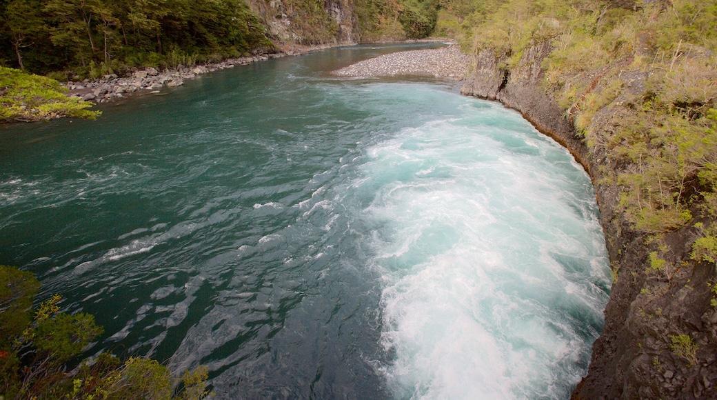 Chutes de Petrohue montrant rivière ou ruisseau