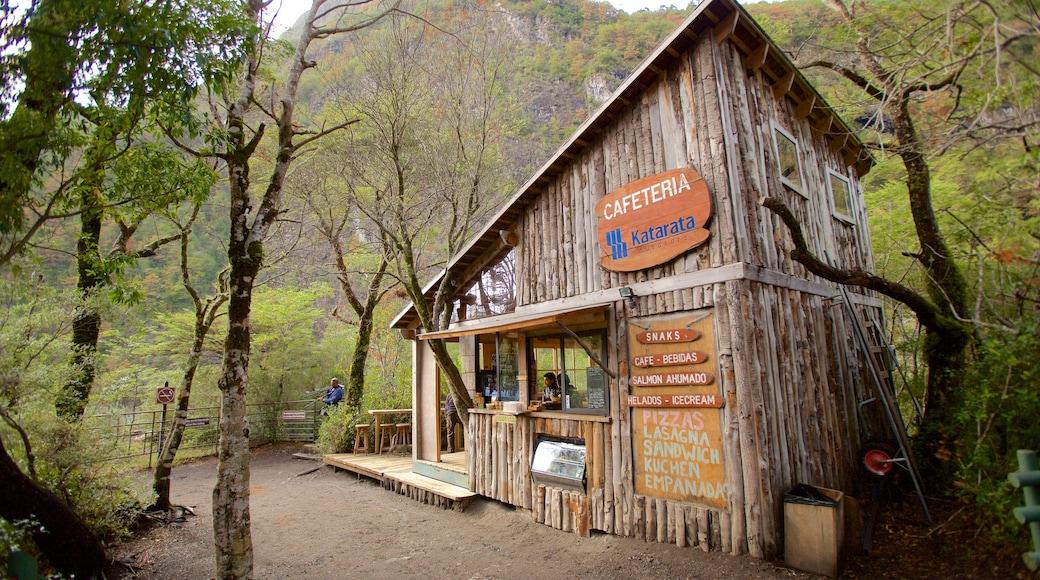 Chutes de Petrohue mettant en vedette forêts et scènes de café