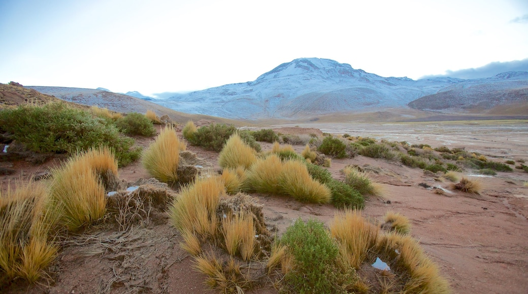 El Tatio Geyser Field mit einem Landschaften