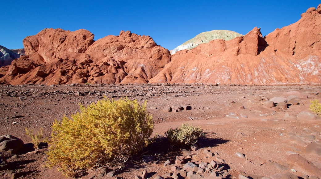 Valle del Arcoiris das einen Wüstenblick und Landschaften