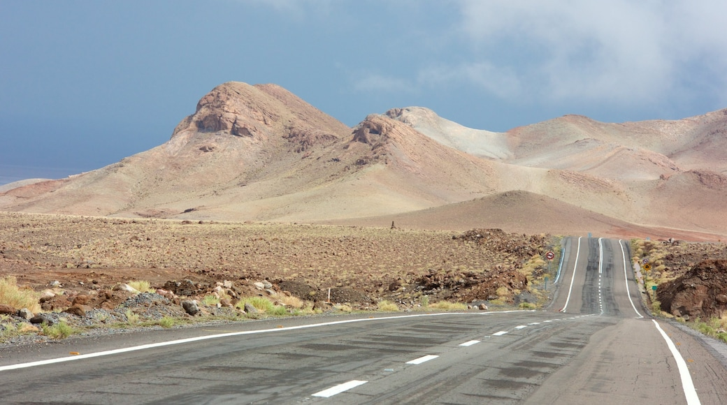 Northern Chile