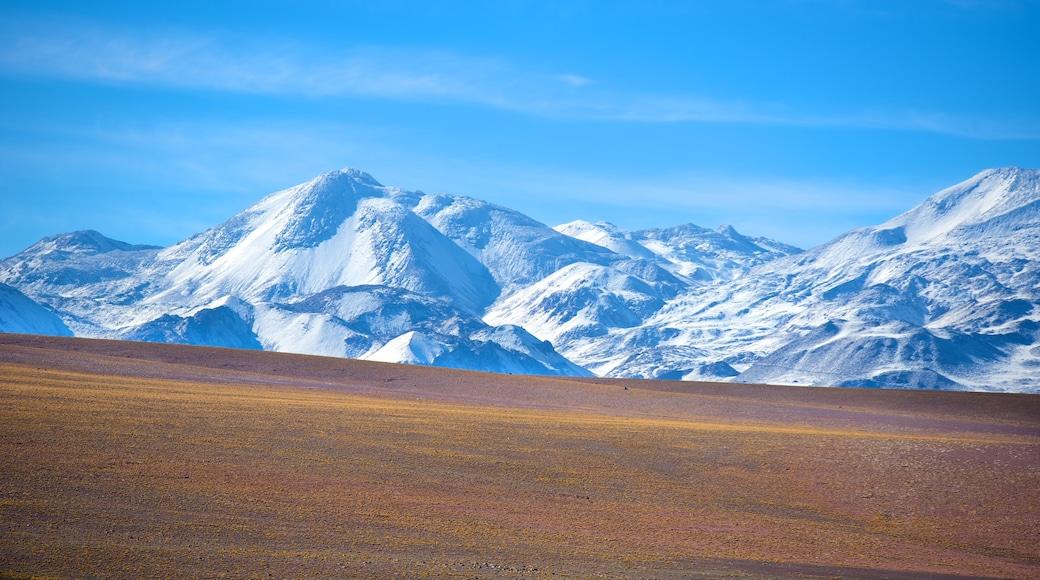 Región de Antofagasta welches beinhaltet Berge und ruhige Szenerie