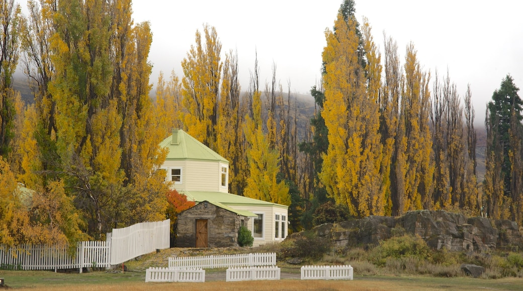 El Calafate showing forest scenes, a house and autumn colours