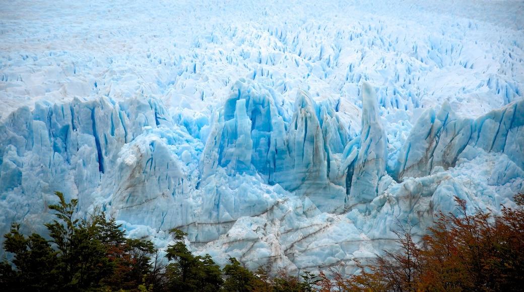 Glaciar Perito Moreno que incluye un lago o laguna y vistas de una costa