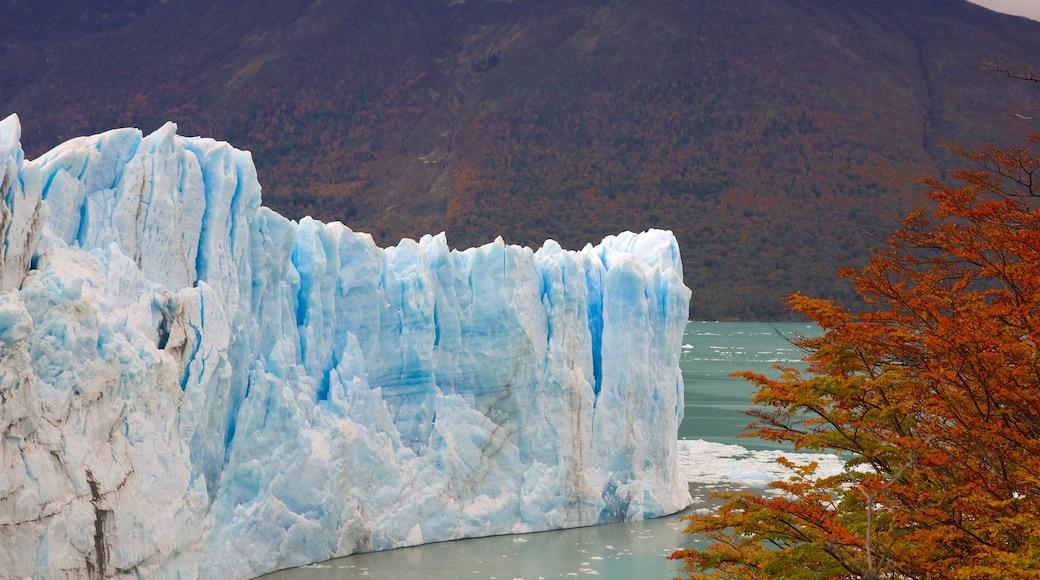 Glaciar Perito Moreno ofreciendo un lago o laguna