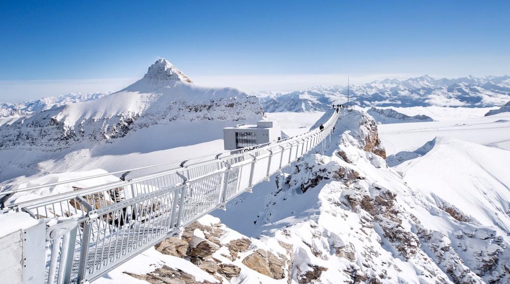 Estación de esquí de Gstaad ofreciendo montañas y nieve