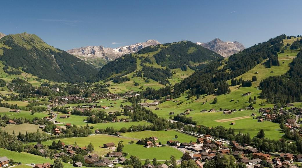 Gstaad qui includes petite ville ou village, montagnes et scènes tranquilles