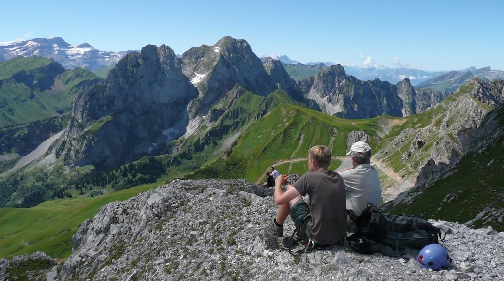 Gstaad qui includes montagnes et gorge ou canyon aussi bien que petit groupe de personnes