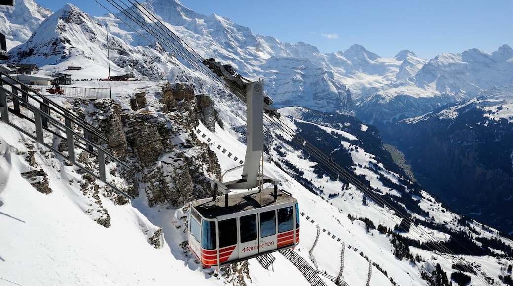 Wengen showing mountains, a gorge or canyon and snow