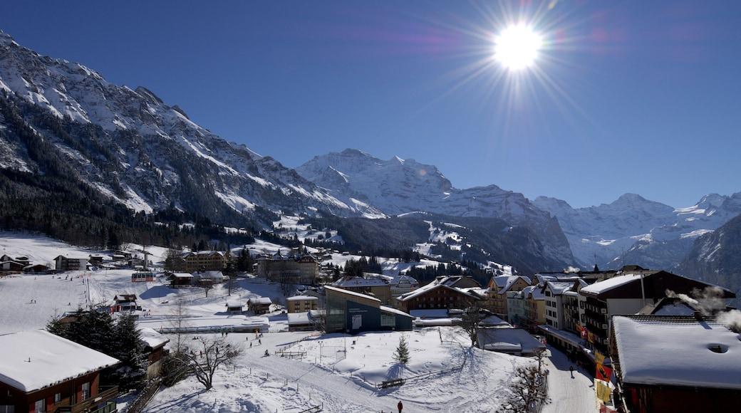 Wengen qui includes montagnes, petite ville ou village et neige