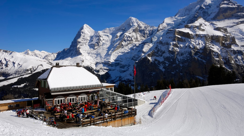 Muerren which includes snow and mountains