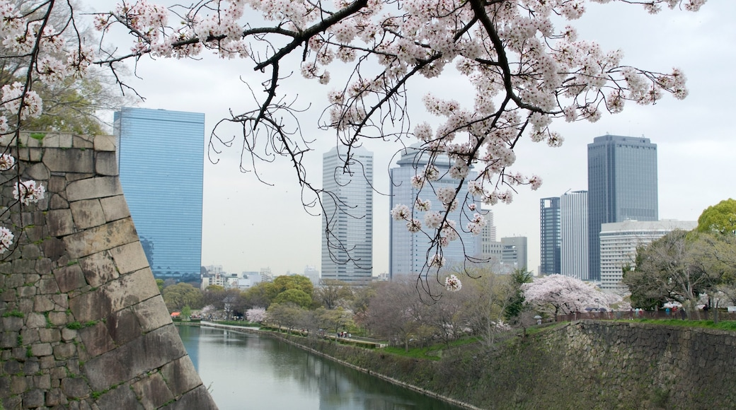 Osaka featuring a city, a river or creek and flowers