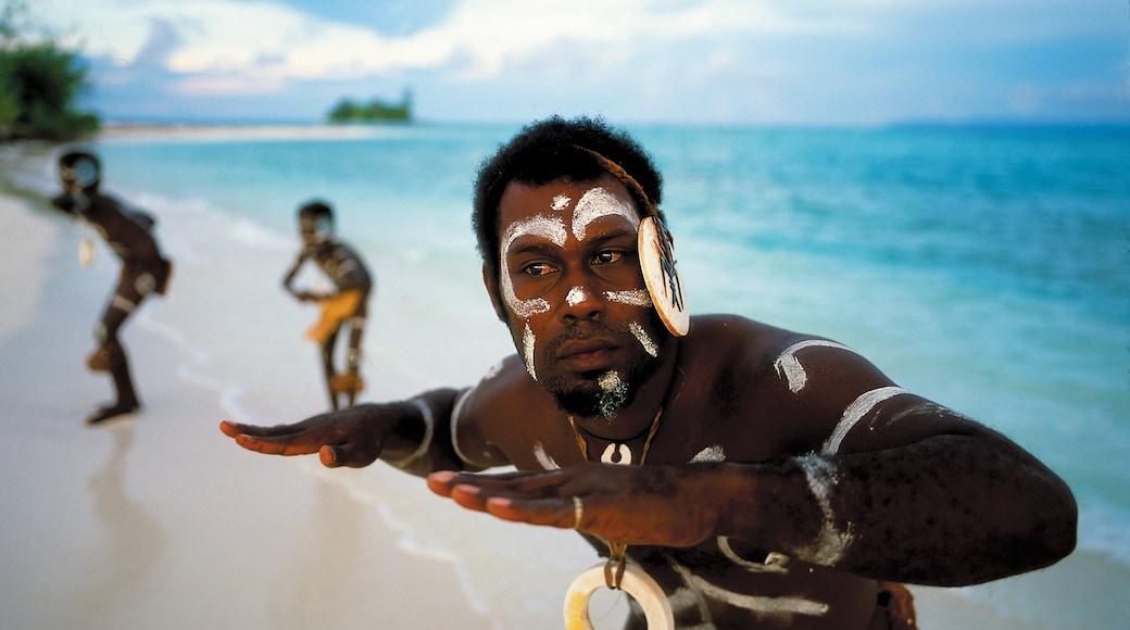 Islas Salomón ofreciendo vistas generales de la costa, una playa y cultura indígena