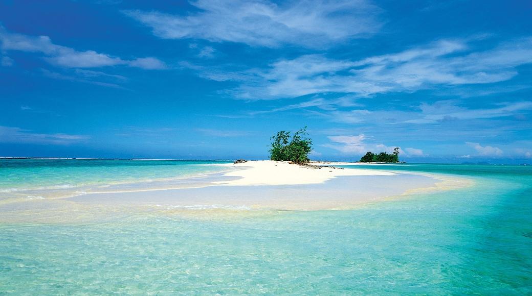 Islas Salomón mostrando vistas generales de la costa y vistas de una isla