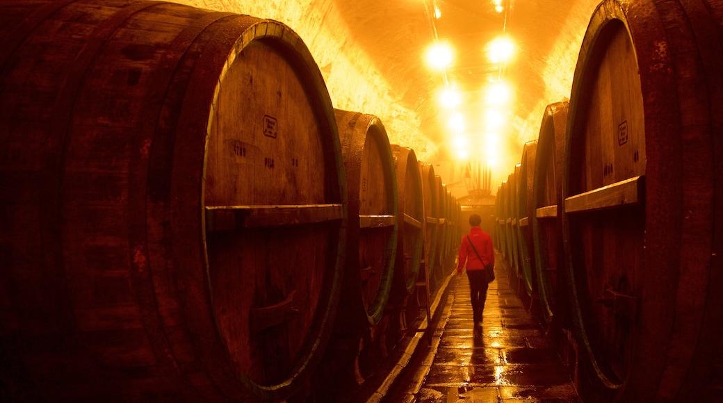 Pilsner Urquell-bryggeriet som omfatter interiør